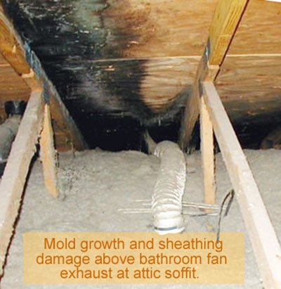 Options for a Bathroom Vent in the Soffit | Bathroom