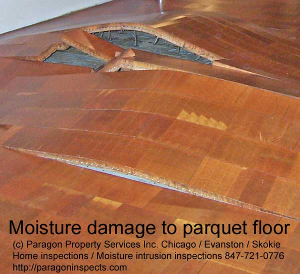 Index of images water problems floors - Fixing wood floor swelling ...
